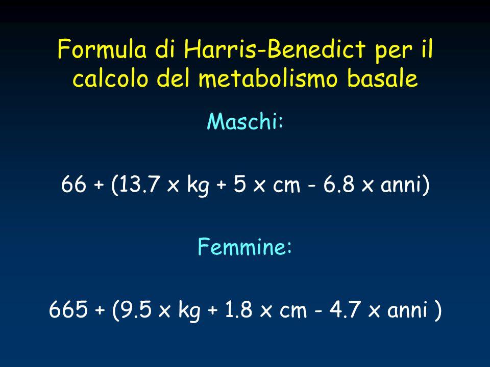 Formula di Harris-Benedict per il calcolo del metabolismo basale Maschi: 66 + (13.7 x kg + 5 x cm - 6.8 x anni) Femmine: 665 + (9.5 x kg + 1.8 x cm -