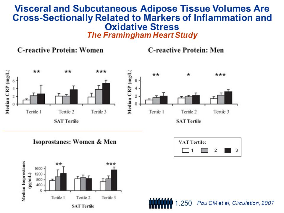 Visceral and Subcutaneous Adipose Tissue Volumes Are Cross-Sectionally Related to Markers of Inflammation and Oxidative Stress The Framingham Heart St
