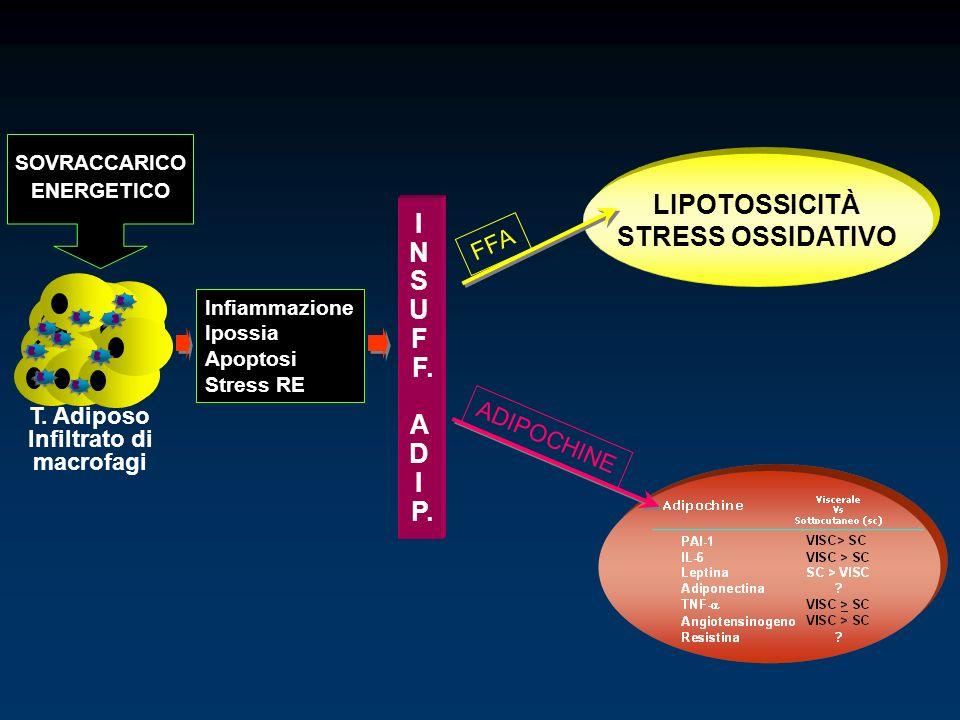 T. Adiposo Infiltrato di macrofagi SOVRACCARICO ENERGETICO Infiammazione Ipossia Apoptosi Stress RE I N S U F F. A D I P. LIPOTOSSICITÀ STRESS OSSIDAT