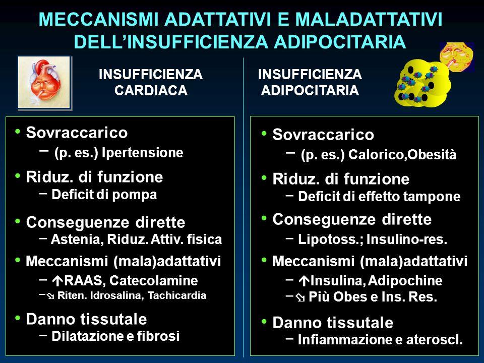 MECCANISMI ADATTATIVI E MALADATTATIVI DELLINSUFFICIENZA ADIPOCITARIA Sovraccarico (p. es.) Ipertensione Riduz. di funzione Deficit di pompa Conseguenz