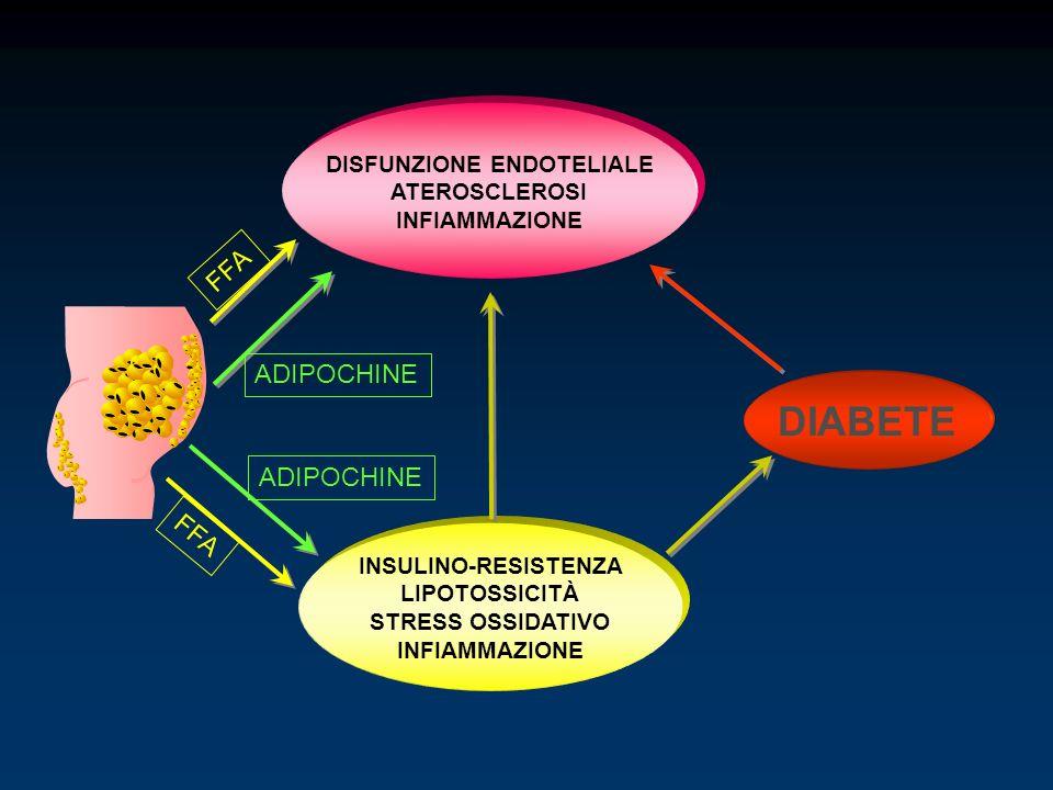 INSULINO-RESISTENZA LIPOTOSSICITÀ STRESS OSSIDATIVO INFIAMMAZIONE DIABETE DISFUNZIONE ENDOTELIALE ATEROSCLEROSI INFIAMMAZIONE ADIPOCHINE FFA ADIPOCHIN