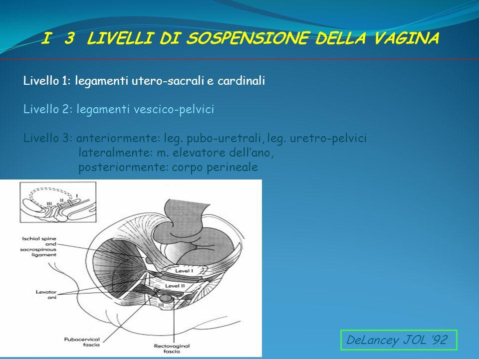 Livello 1: legamenti utero-sacrali e cardinali Livello 2: legamenti vescico-pelvici Livello 3: anteriormente: leg. pubo-uretrali, leg. uretro-pelvici