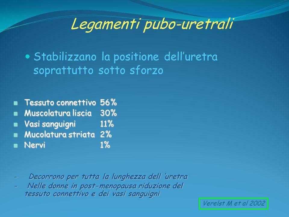Legamenti pubo-uretrali Stabilizzano la positione delluretra soprattutto sotto sforzo n Tessuto connettivo56% n Muscolatura liscia30% n Vasi sanguigni