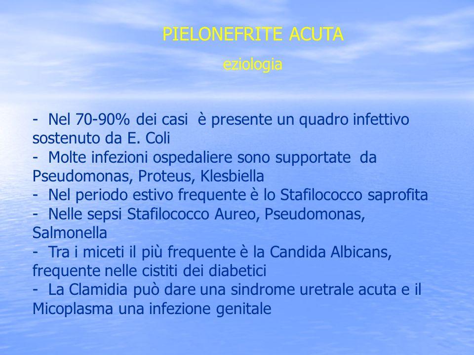 PIELONEFRITE ACUTA eziologia - Nel 70-90% dei casi è presente un quadro infettivo sostenuto da E. Coli - Molte infezioni ospedaliere sono supportate d