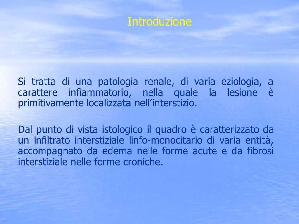 Si tratta di una patologia renale, di varia eziologia, a carattere infiammatorio, nella quale la lesione è primitivamente localizzata nellinterstizio.