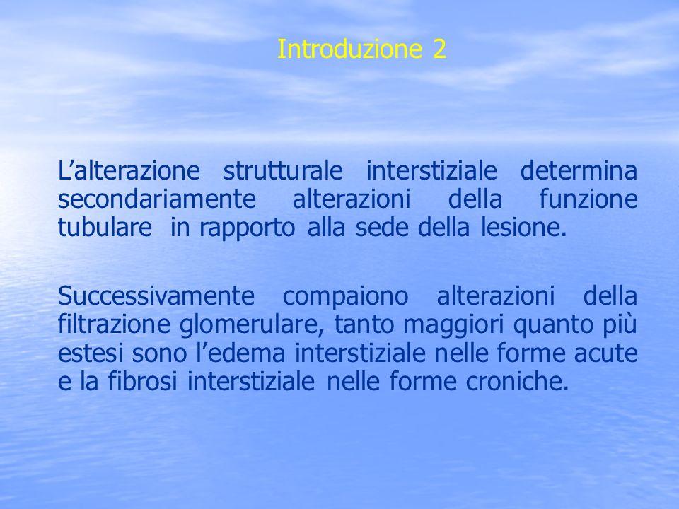 Classificazione A)Nefrite interstiziale acuta B)Nefrite interstiziale cronica