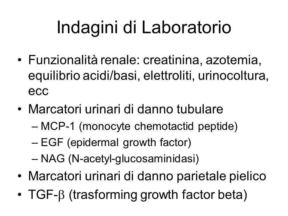 Indagini di Laboratorio Funzionalità renale: creatinina, azotemia, equilibrio acidi/basi, elettroliti, urinocoltura, ecc Marcatori urinari di danno tu