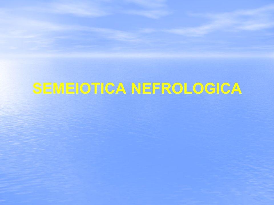 COSTITUENTI PATOLOGICI PROTEINURIA- 2 Le cellule tubulari secernono alcune proteine di basso peso molecolare (β2-Microglobulina) La Proteinuria va valutata sulle urine delle 24 ore Esistono Proteinurie asintomatiche non legate ad una patologia renale come la Proteinuria ortostatica, la Proteinuria da sforzo, la Proteinuria Febbrile.