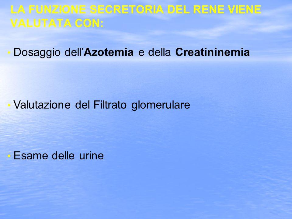 LA FUNZIONE SECRETORIA DEL RENE VIENE VALUTATA CON: Dosaggio dellAzotemia e della Creatininemia Valutazione del Filtrato glomerulare Esame delle urine