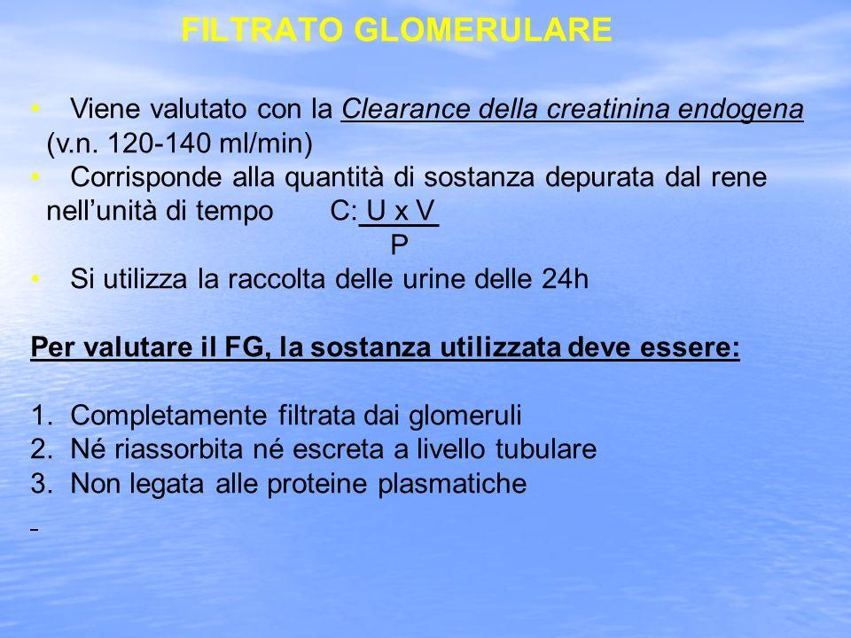 FILTRATO GLOMERULARE Viene valutato con la Clearance della creatinina endogena (v.n.