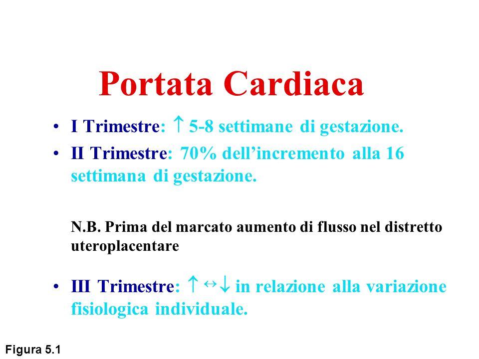 Portata Cardiaca I Trimestre: 5-8 settimane di gestazione. II Trimestre: 70% dellincremento alla 16 settimana di gestazione. N.B. Prima del marcato au