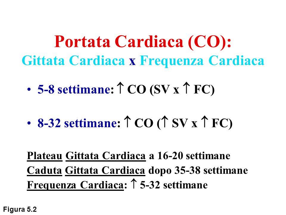 Portata Cardiaca (CO): Gittata Cardiaca x Frequenza Cardiaca 5-8 settimane: CO (SV x FC) 8-32 settimane: CO ( SV x FC) Plateau Gittata Cardiaca a 16-2