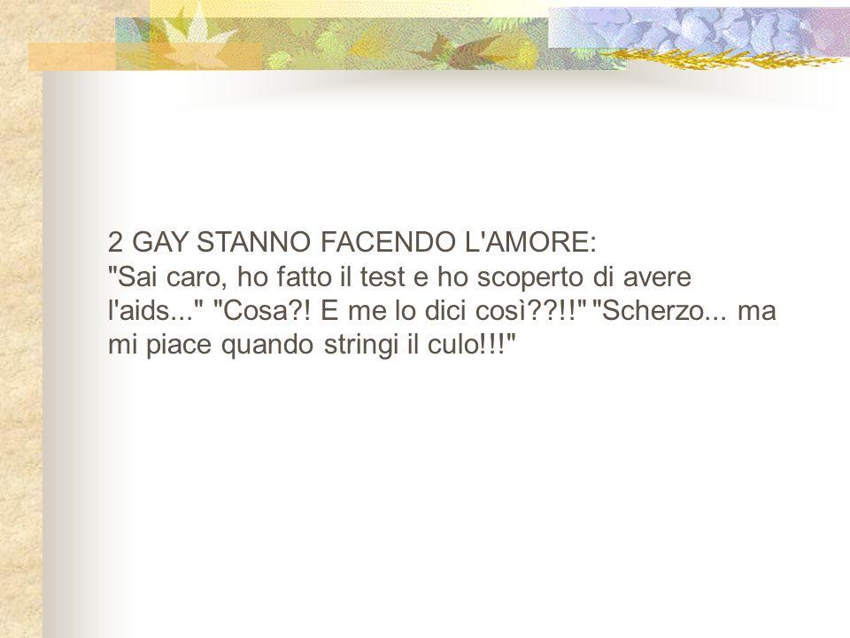 2 GAY STANNO FACENDO L'AMORE: