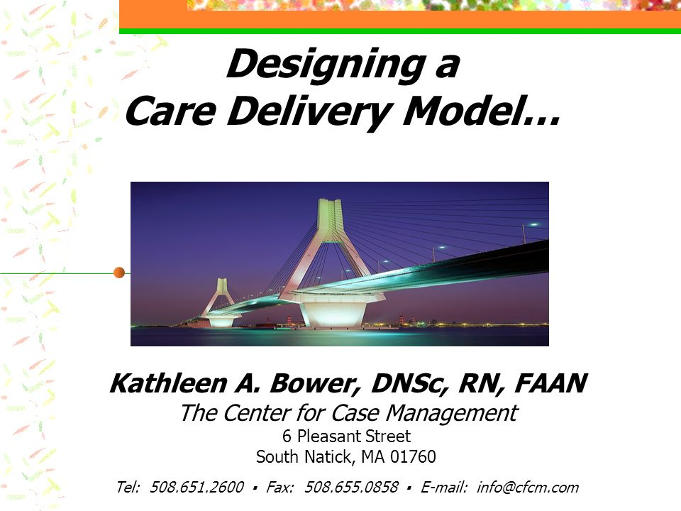 Designing a Care Delivery Model… Kathleen A. Bower, DNSc, RN, FAAN The Center for Case Management 6 Pleasant Street South Natick, MA 01760 Tel: 508.65