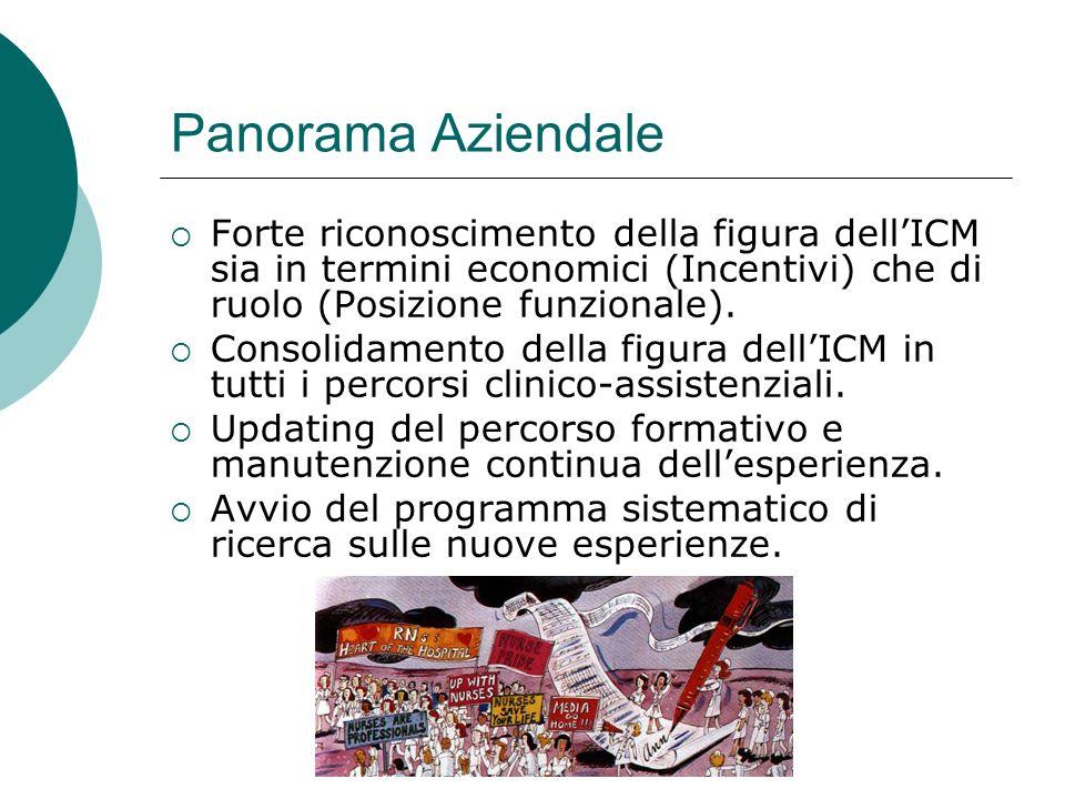 23 maggio 2008 Panorama Aziendale Forte riconoscimento della figura dellICM sia in termini economici (Incentivi) che di ruolo (Posizione funzionale).