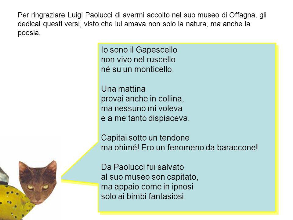 Per ringraziare Luigi Paolucci di avermi accolto nel suo museo di Offagna, gli dedicai questi versi, visto che lui amava non solo la natura, ma anche la poesia.