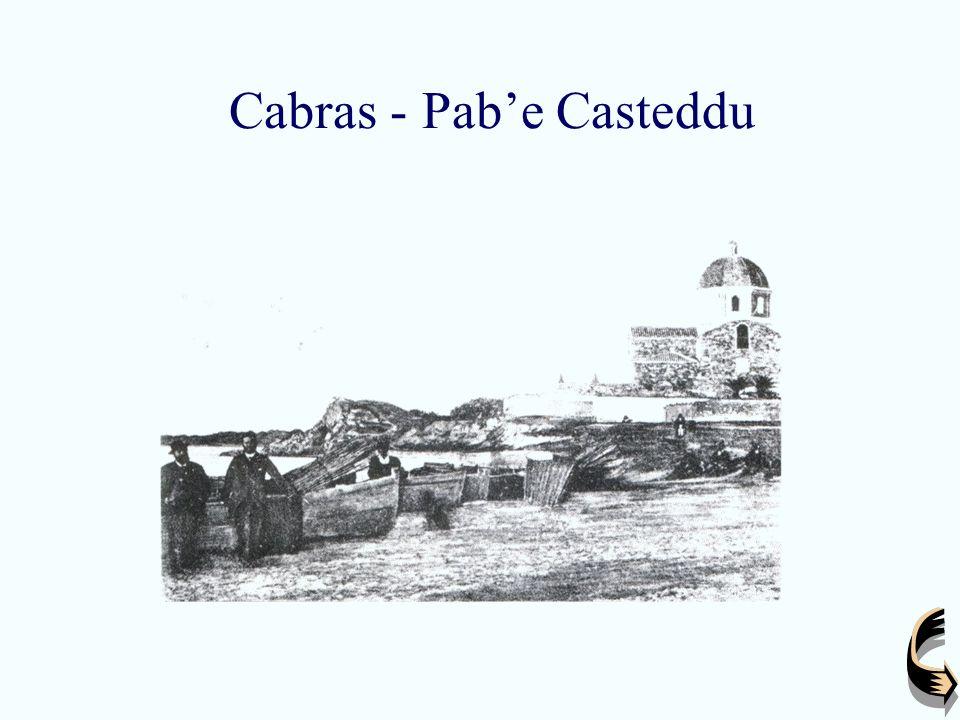 Cabras - Pabe Casteddu
