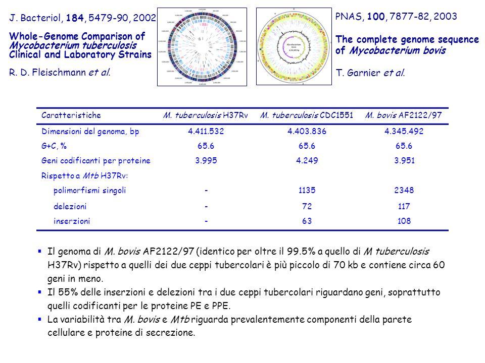 J. Bacteriol, 184, 5479-90, 2002 Whole-Genome Comparison of Mycobacterium tuberculosis Clinical and Laboratory Strains R. D. Fleischmann et al. PNAS,