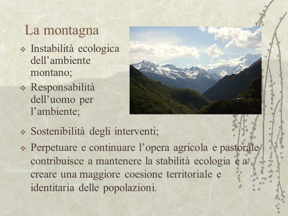 La montagna Instabilità ecologica dellambiente montano; Responsabilità delluomo per lambiente; Sostenibilità degli interventi; Perpetuare e continuare