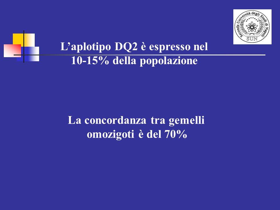 Laplotipo DQ2 è espresso nel 10-15% della popolazione La concordanza tra gemelli omozigoti è del 70%