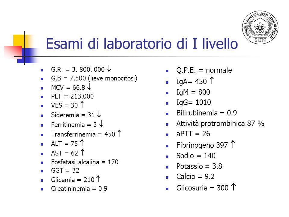 Esami di laboratorio di I livello G.R. = 3. 800. 000 G.B = 7.500 (lieve monocitosi) MCV = 66.8 PLT = 213.000 VES = 30 Sideremia = 31 Ferritinemia = 3