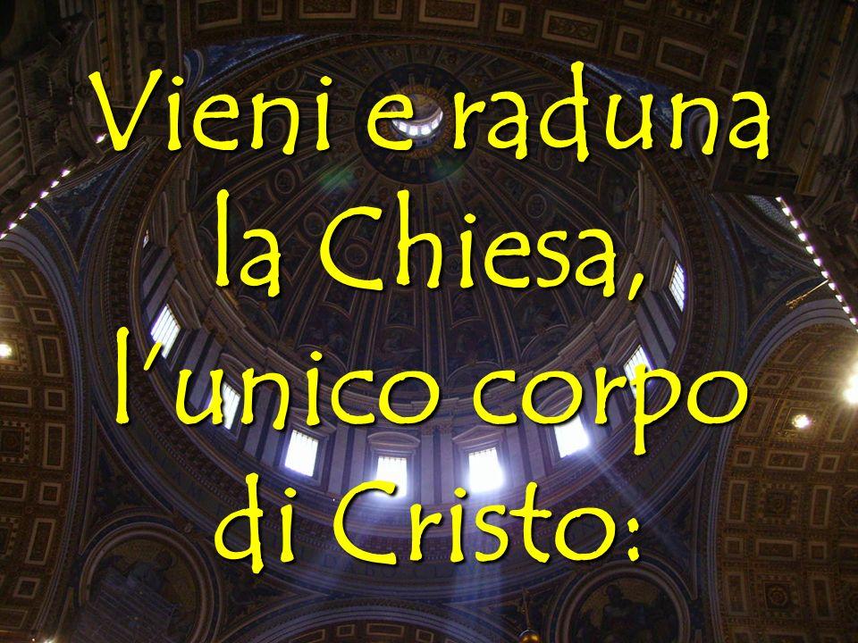 Vieni e raduna la Chiesa, lunico corpo di Cristo: