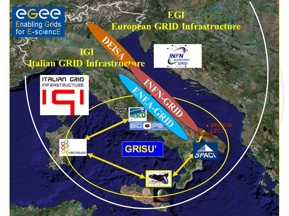PORTICI BRINDISILECCE TRISAIA GRISU EGI European GRID Infrastructure DEISA IGI Italian GRID Infrastructure INFN-GRID ENEA-GRID