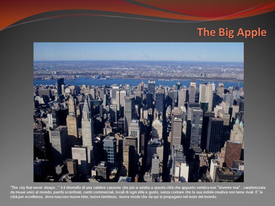 Manhattan è il quartiere più popolato della città, dove si trovano i maggiori grattacieli e Central Park.