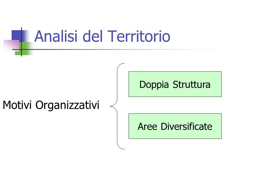 Analisi del Territorio Motivi Organizzativi Doppia Struttura Aree Diversificate