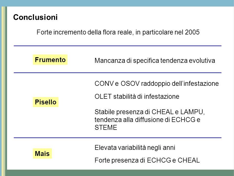 Conclusioni Forte incremento della flora reale, in particolare nel 2005 Mancanza di specifica tendenza evolutiva Frumento Pisello CONV e OSOV raddoppi