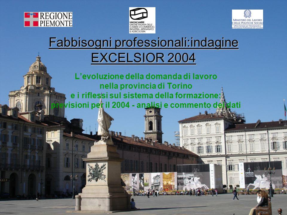 Fabbisogni professionali:indagine EXCELSIOR 2004 Levoluzione della domanda di lavoro nella provincia di Torino e i riflessi sul sistema della formazione: previsioni per il 2004 - analisi e commento dei dati