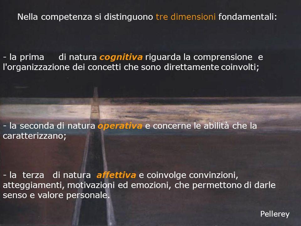 Nella competenza si distinguono tre dimensioni fondamentali: - la prima di natura cognitiva riguarda la comprensione e l organizzazione dei concetti che sono direttamente coinvolti; - la terza di natura affettiva e coinvolge convinzioni, atteggiamenti, motivazioni ed emozioni, che permettono di darle senso e valore personale.