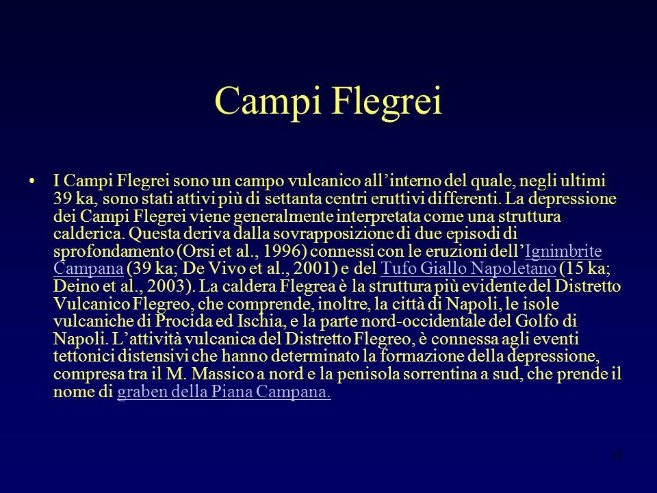 38 Campi Flegrei I Campi Flegrei sono un campo vulcanico allinterno del quale, negli ultimi 39 ka, sono stati attivi più di settanta centri eruttivi differenti.