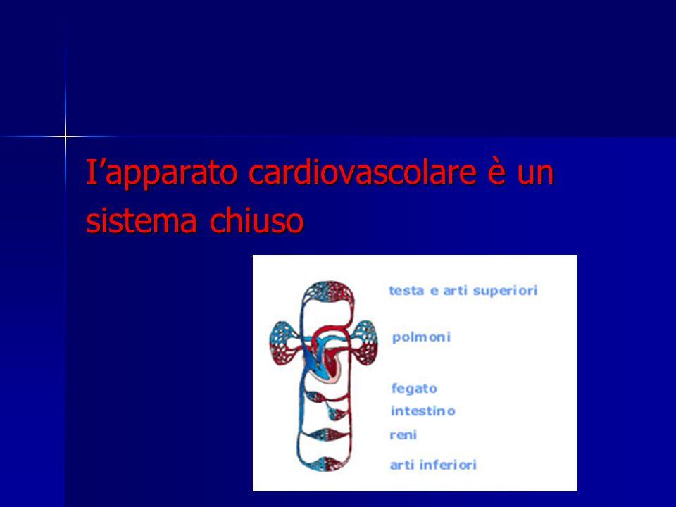 La fase di contrazione (degli atri e dei ventricoli) si chiama sistole.