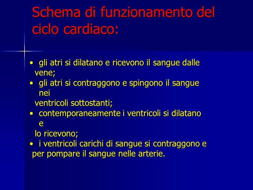 Schema di funzionamento del ciclo cardiaco: gli atri si dilatano e ricevono il sangue dallegli atri si dilatano e ricevono il sangue dalle vene; vene;