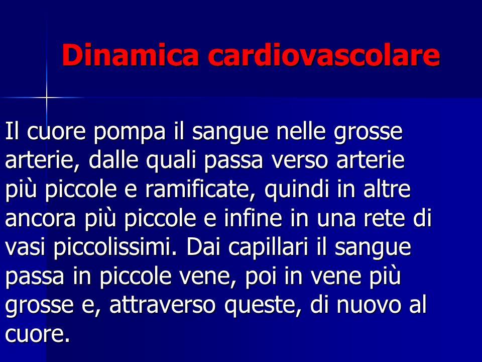 Dinamica cardiovascolare Il cuore pompa il sangue nelle grosse arterie, dalle quali passa verso arterie più piccole e ramificate, quindi in altre anco