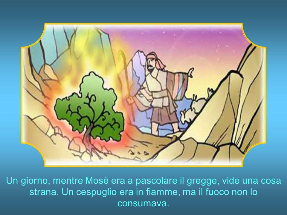 Il Faraone lo venne a sapere e Mosè dovette fuggire dallEgitto mettendosi in salvo nel deserto dove rimase per lungo tempo.