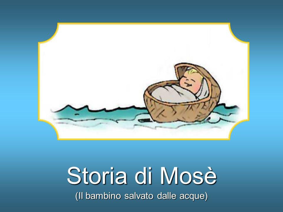 Un giorno, mentre Mosè era a pascolare il gregge, vide una cosa strana.