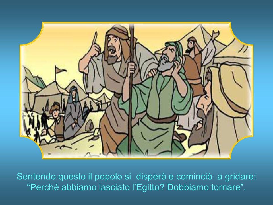 Questi tornarono dopo quaranta giorni.Canaan è una buona terra, riferirono.