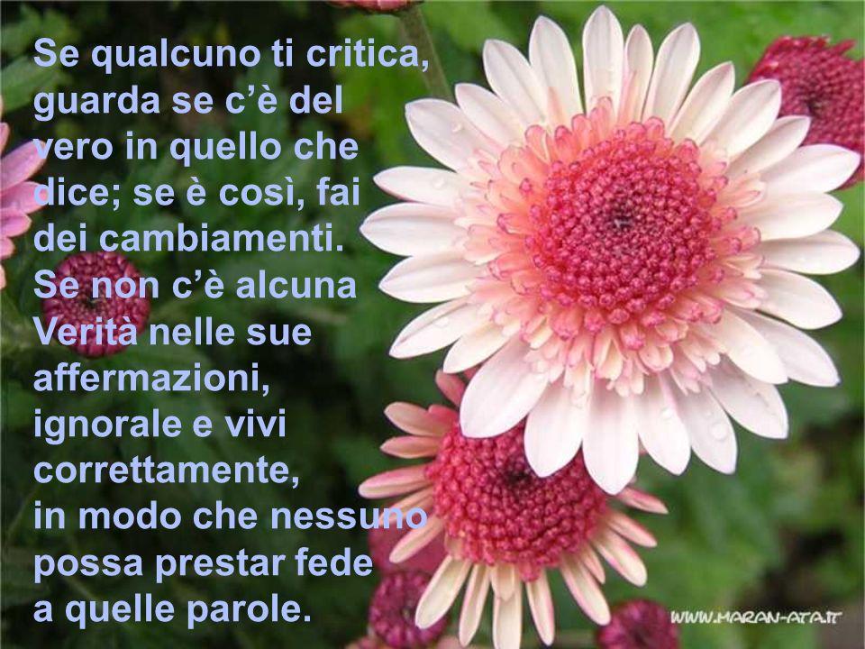 Se qualcuno ti critica, guarda se cè del vero in quello che dice; se è così, fai dei cambiamenti. Se non cè alcuna Verità nelle sue affermazioni, igno