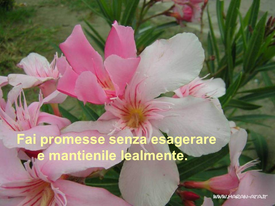 Non sprecare lopportunità di complimentarti o di dire qualcosa di incoraggiante a qualcuno.