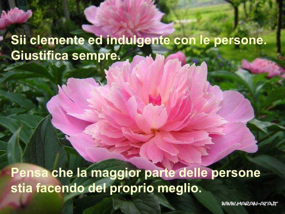 Sii clemente ed indulgente con le persone. Giustifica sempre. Pensa che la maggior parte delle persone stia facendo del proprio meglio.