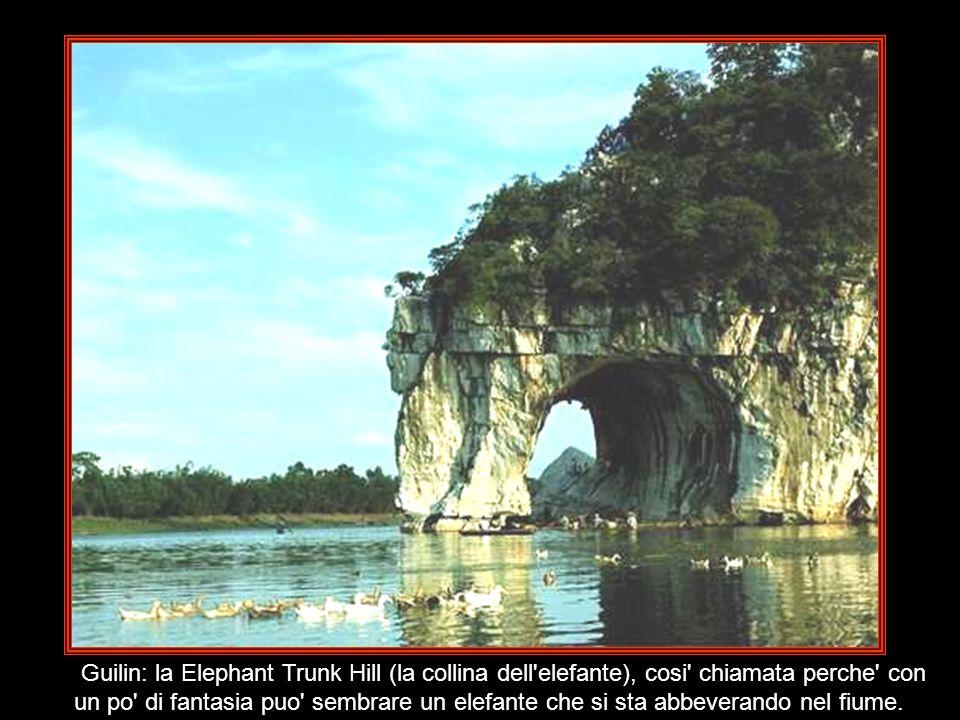 Guilin: la Elephant Trunk Hill (la collina dell elefante), cosi chiamata perche con un po di fantasia puo sembrare un elefante che si sta abbeverando nel fiume.