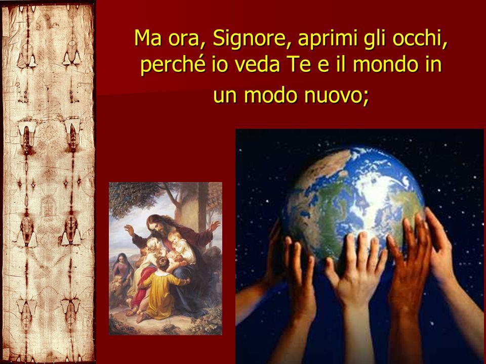 Ma ora, Signore, aprimi gli occhi, perché io veda Te e il mondo in un modo nuovo;