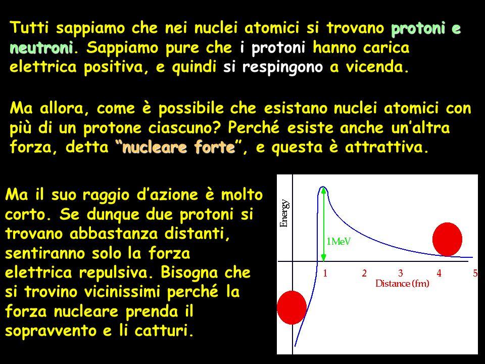 protoni e neutroni Tutti sappiamo che nei nuclei atomici si trovano protoni e neutroni. Sappiamo pure che i protoni hanno carica elettrica positiva, e