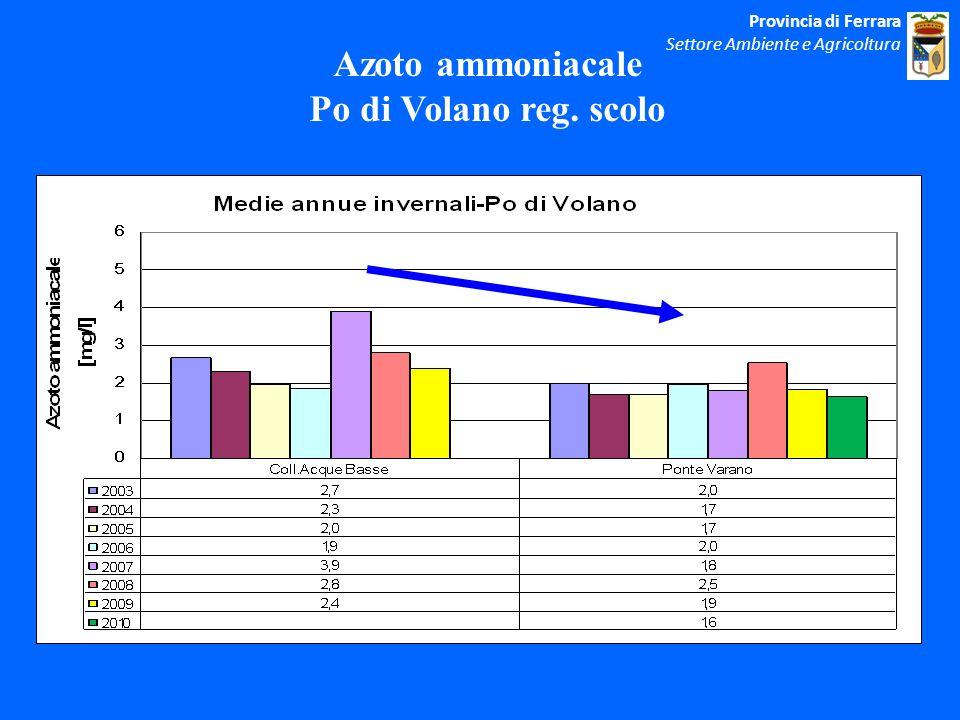 Azoto ammoniacale Po di Volano reg. scolo Provincia di Ferrara Settore Ambiente e Agricoltura