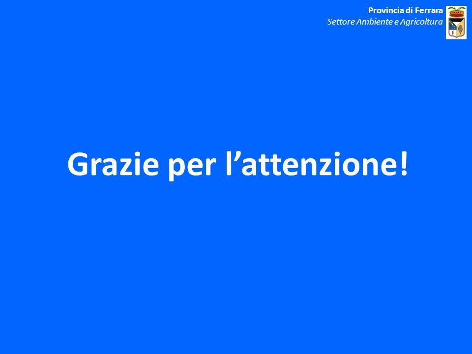 Grazie per lattenzione! Provincia di Ferrara Settore Ambiente e Agricoltura