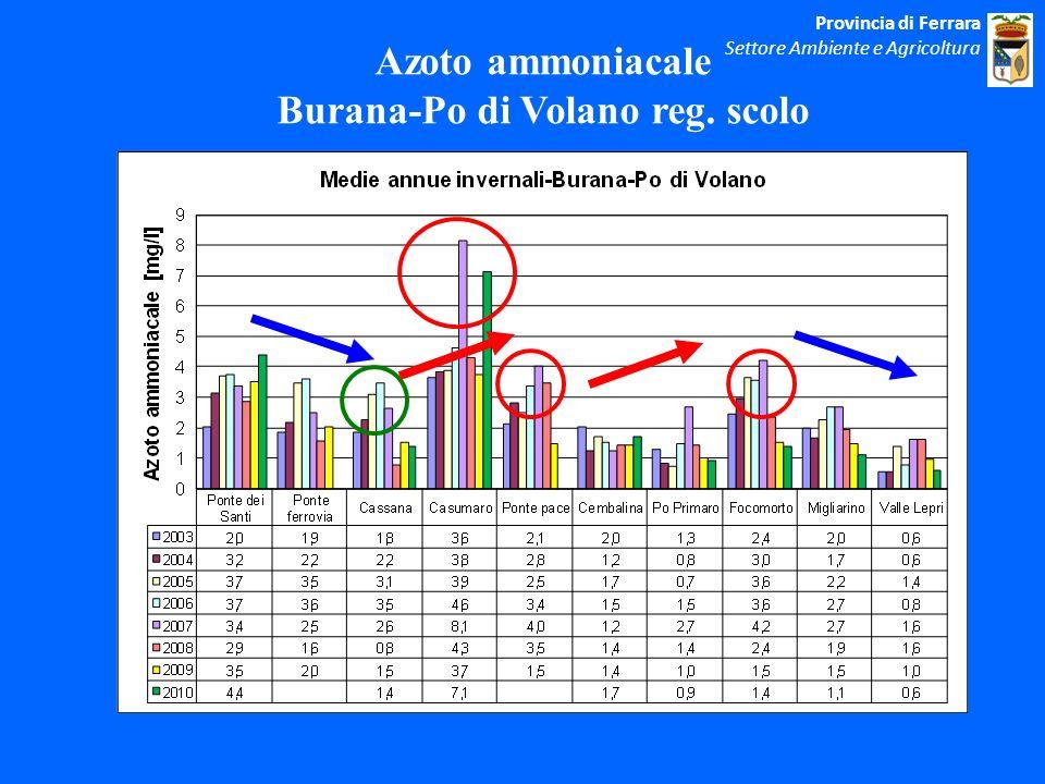 Azoto ammoniacale Burana-Po di Volano reg.