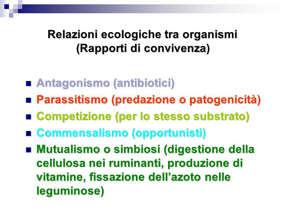 Relazioni ecologiche tra organismi (Rapporti di convivenza) Antagonismo (antibiotici) Antagonismo (antibiotici) Parassitismo (predazione o patogenicit