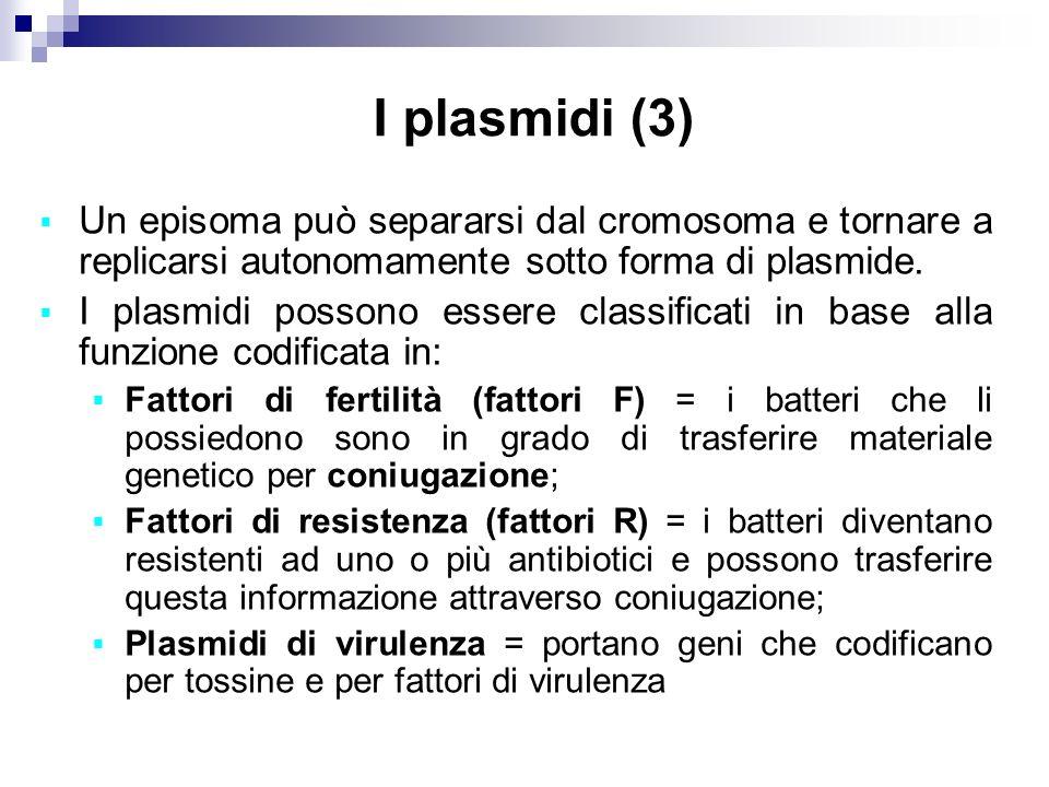 I plasmidi (3) Un episoma può separarsi dal cromosoma e tornare a replicarsi autonomamente sotto forma di plasmide. I plasmidi possono essere classifi
